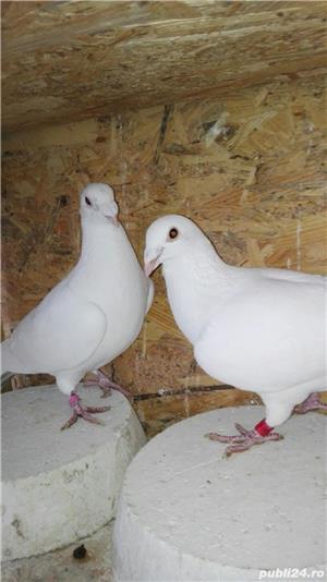 Porumbei ornament - imagine 4