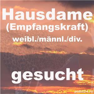 Empfangskraft, Hausdame (weibl./männl./div) gesucht - imagine 2
