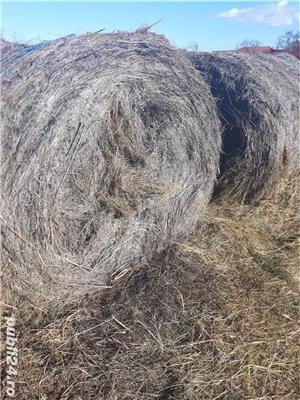 baloti de vanzare  - imagine 3