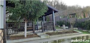 Vand teren si casa vacanta comuna Simian - imagine 3