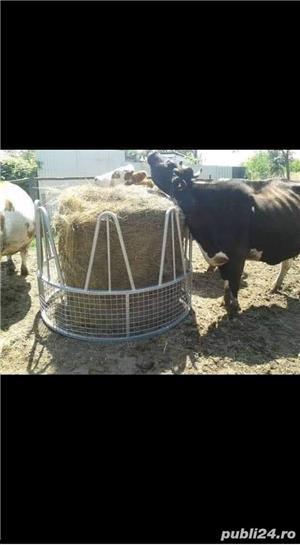 Iesle pt oi, vaci,cai - imagine 8