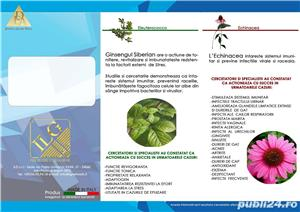 afacerea ta cu  produse naturiste si cosmetice bio - imagine 2