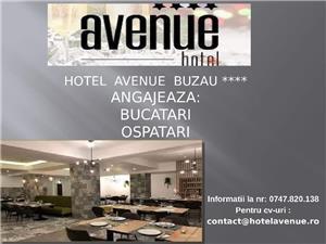 Hotel Avenue Buzau angajeaza - imagine 2