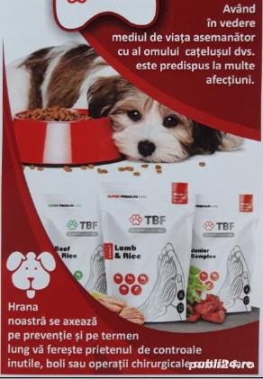Sanatate pentru animalul tau de Companie ! - imagine 1