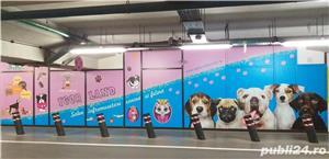 Salon canin tuns caini Timisoara - imagine 4
