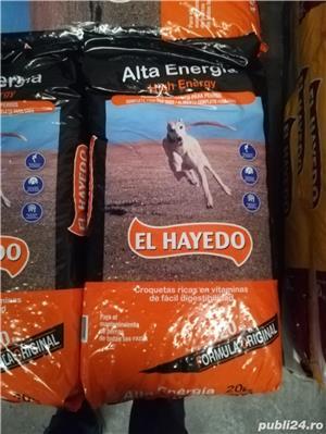 Vand Hrana Caini El Hayedo - imagine 2