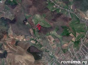 Teren extravilan 9,700 mp, Sancraiu de Mures, jud. Mures - imagine 1