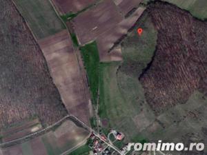 Teren extravilan 9,700 mp, Sancraiu de Mures, jud. Mures - imagine 11