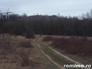 ID:10513: Teren agricol, Dedulesti, Varzaru - imagine 6