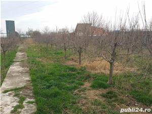 Hala si teren intravilan 6000 mp , Constanta,B-dul Aurel Vlaicu, zona Palas - imagine 9