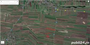 Teren agricol (extravilan) 3.35/ha, Redea, Olt - imagine 1