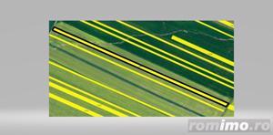 Teren extravilan 10000 mp in Pielesti, Dolj - imagine 3