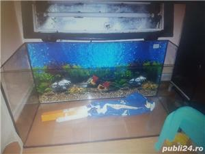 Vand acvariu Aquael 120 litri - imagine 5