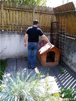 Cușcă câine  - imagine 4