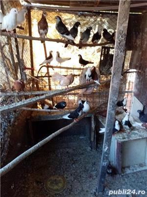 Porumbei:Gălățeni,Jucători, Botosaneni - imagine 2