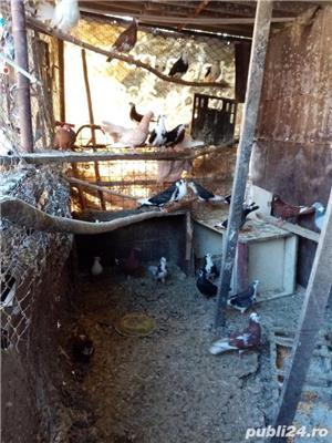 Porumbei:Gălățeni,Jucători, Botosaneni - imagine 1