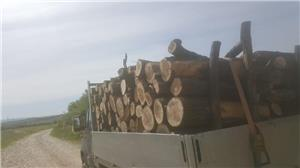 lemn foc Mehedinti - imagine 4