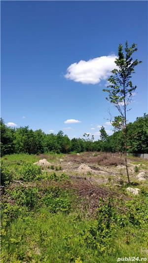 Oferta rate-Teren Iasi Sat Paun-BUCIUM (linga padure) 8000 m2 cu utilitati in zona, accept si auto - imagine 6