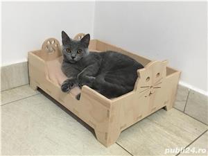 Pătuț pisică/cățel  - imagine 4
