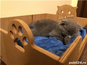 Pătuț pisică/cățel  - imagine 5