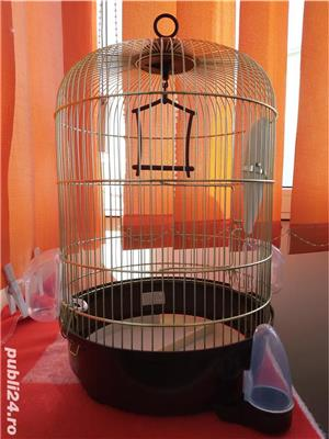 Colivie păsări  - imagine 1