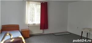 Casa singur in curte zona Lupeni- str.Teilor - imagine 11