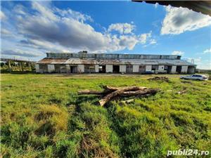 Depozit la calea ferata, Hale industriale Ortisoara, Direct Proprietar. - imagine 4