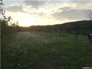 Teren intravilan comuna Dumbravești sat Malaestii de jos - imagine 7