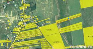 Teren arabil 4.900 mp sat Letcani jud. Iasi ID 7171 - imagine 3