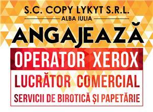 COPY KIT Alba Iulia angajeza OPERATOR XEROX - imagine 2
