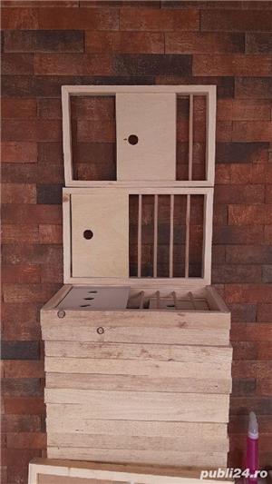 Fete de boxe pentru porumbei. - imagine 6