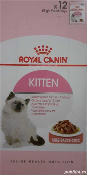 42 plicuri hrana umeda Royal Canin Kitten - imagine 5