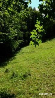 Vând urgent proprietate mirifica în Campeni Slba - imagine 2