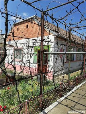 Casa de vanzare Jimbolia - imagine 9