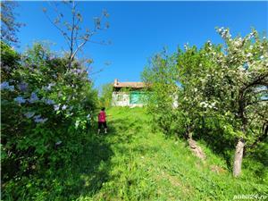 Teren intravilan pentru constructii in prahova bonus casa veche URGENTproprietar - imagine 4