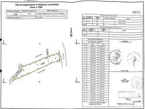 Doua Terenuri Intravilane cu Pret corect in Brebu, Prahova - imagine 4