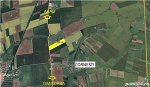 26 ha teren arabil Ortisoara - imagine 2