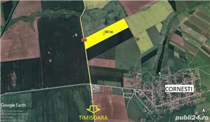 26 ha teren arabil Ortisoara - imagine 4